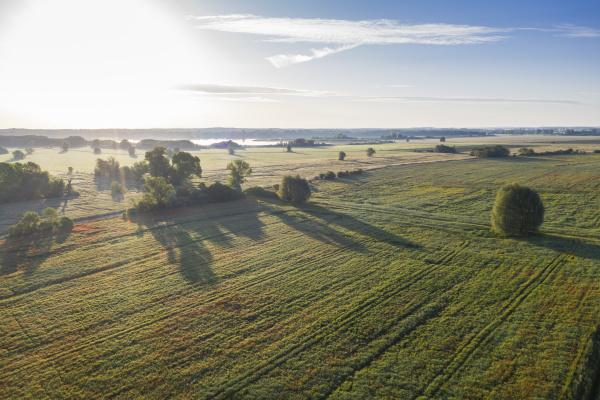 germany, , brandenburg, , drone, view - 28741039