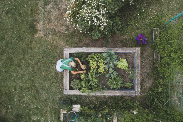 luftaufnahme der mittleren erwachsenen frau pflanzung