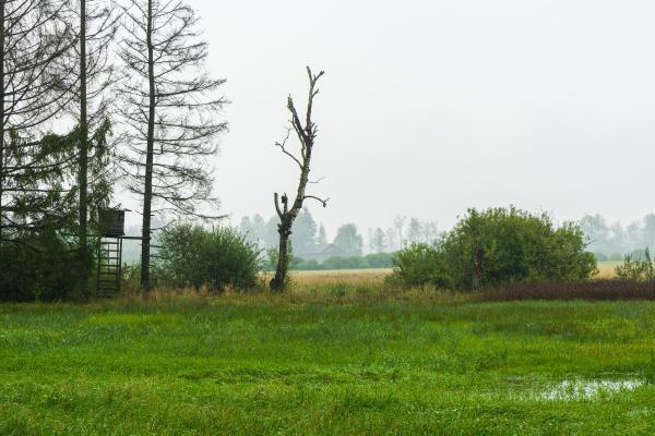nasses und regnerisches wetter in benediktbeuern