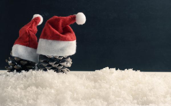 tannenzapfen mit hut des weihnachtsmannes auf