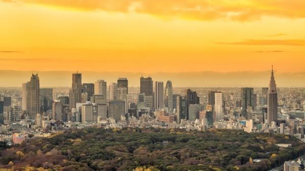 dresinsicht auf die skyline von tokio
