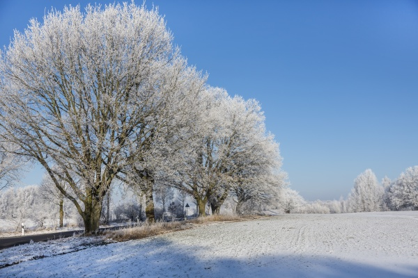 winteridylle im norden deutschlands