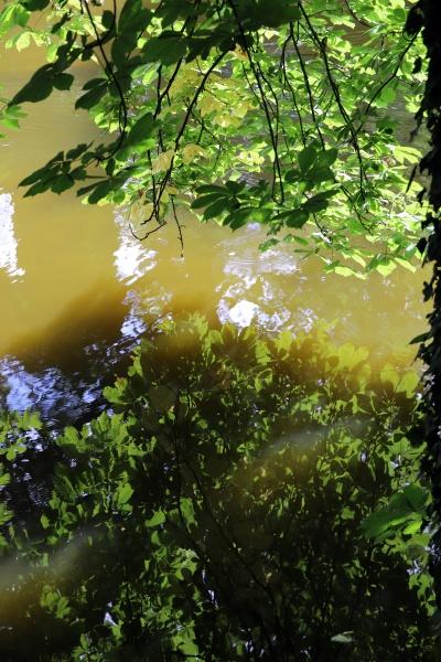wassergraben im park des ehemaligen staatsschlosses