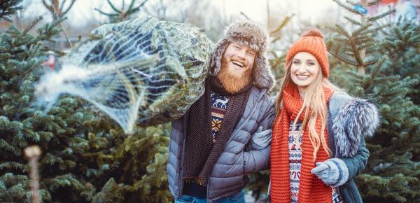 mann und frau die einen weihnachtsbaum