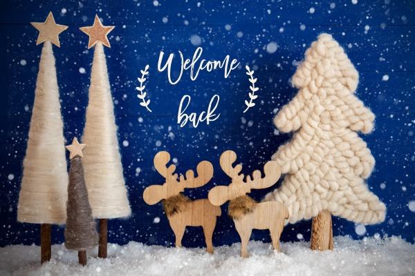 weihnachtsbaum elch schnee text willkommen zurueck
