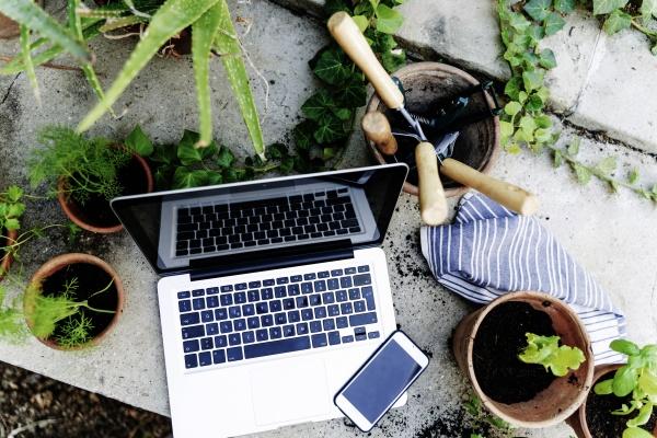hochwinkelansicht von laptop smartphone pflanze im