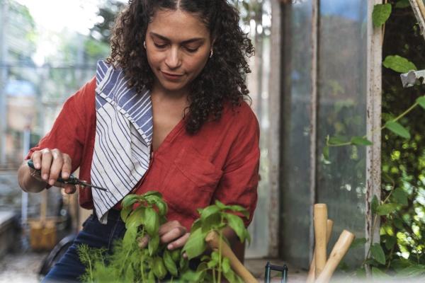 reife frau schneidet pflanze beim sitzen