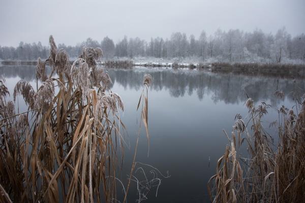 winter frostige landschaft