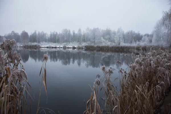winter, frostige, landschaft - 29124720