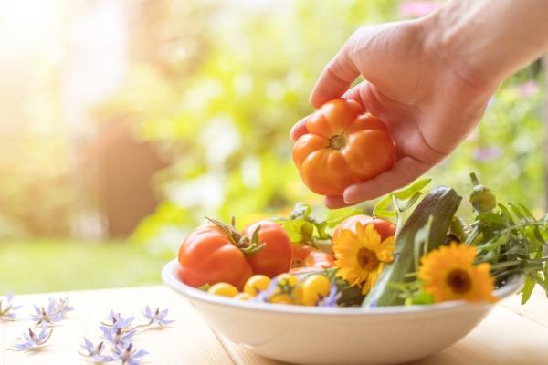 urban gardening frisch angebautes gemuese das
