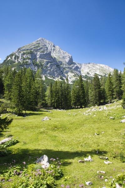 alpine landschaft im gesaeuse nationalpark in