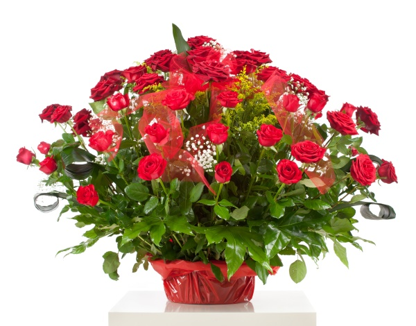 korb mit fuenfzig roten rosen isoliert