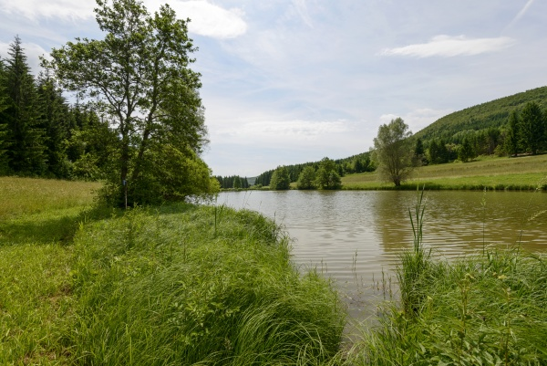kleiner see im suedschwarzwald ofingen baden