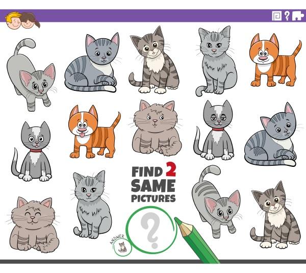 finden sie zwei gleiche cartoon katzen