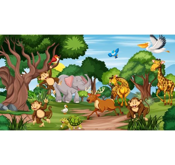 wild, animals, in, the, jungle - 30179535