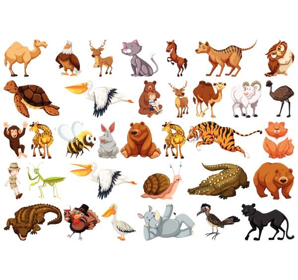 set, of, wild, animal - 30194771