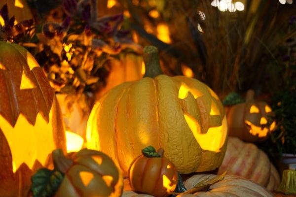 bild von halloween jack laterne