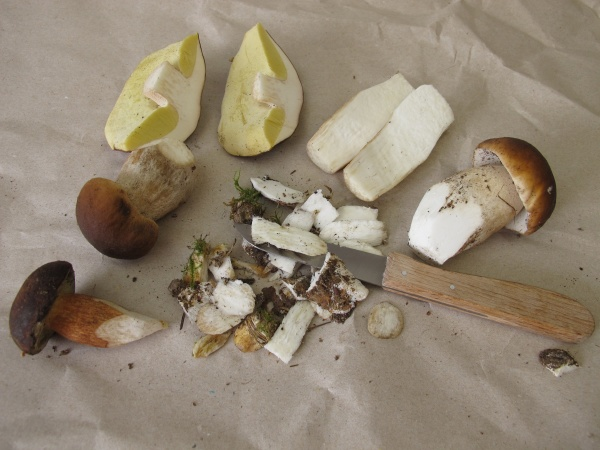 clean, and, prepare, mushrooms, with, a - 30456236