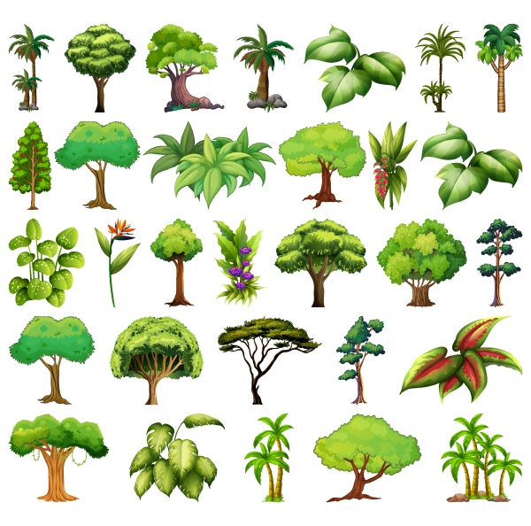 set, of, variety, plants, and, trees - 30462442