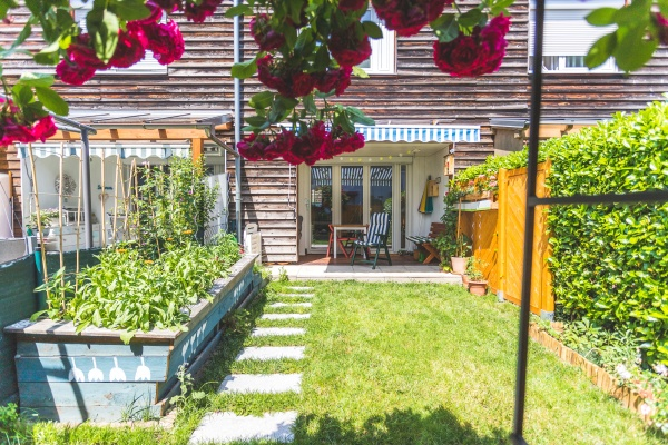 cozy, and, homely, little, garden, - 30493014