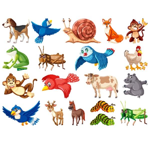 large, set, of, wild, animals, on - 30533707