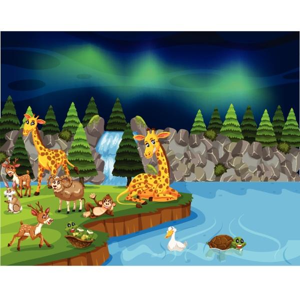 wild, animals, near, lake, night, scene - 30541926