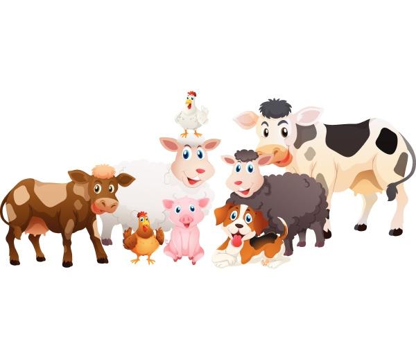 many, types, of, farm, animals - 30546739