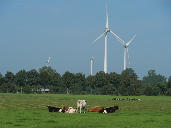 the, dutch, gelderland, near, winterswijk - 30715340