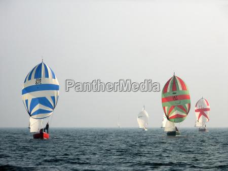 regatta in the mist ii