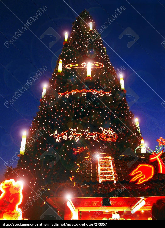 Größter Tannenbaum Deutschlands.Stockfoto 273357 Größter Weihnachtsbaum Der Welt