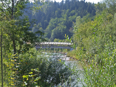 wooden bridge over the liq