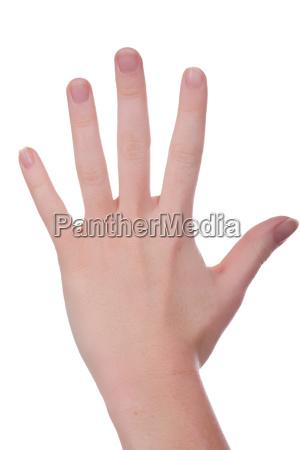 ganze hand