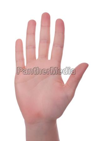 handinnenflaeche
