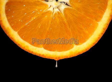 orange apfelsine pomeranze makro grossaufnahme macro