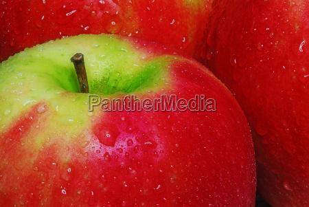 vitamine frucht obst aepfel apfel kost