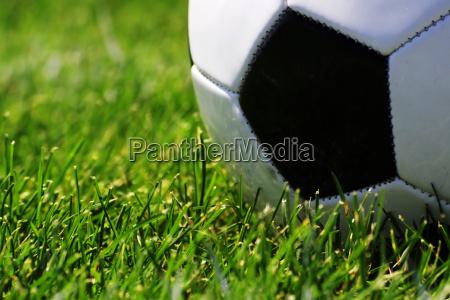soccer ball close up