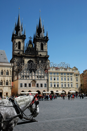 horses in front of a church