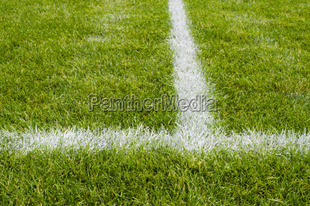 soccer field intersecting lines