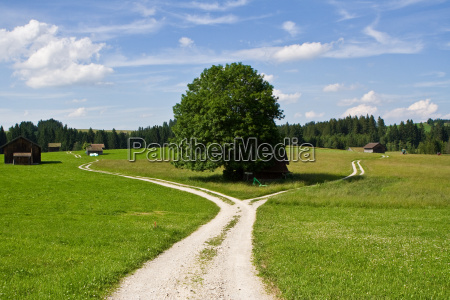 scheideweg - 1361947