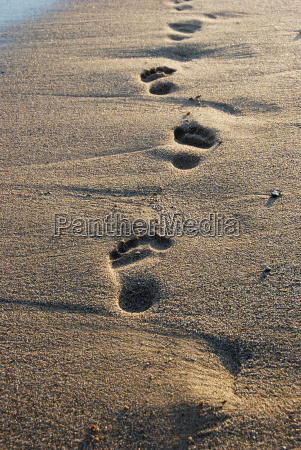foot track 1