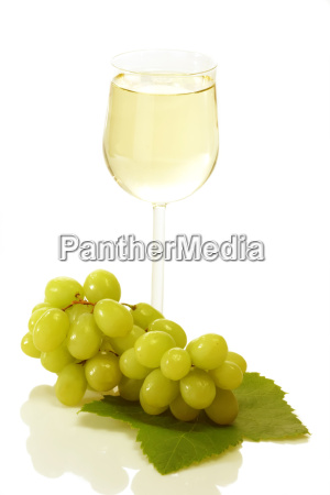 wine with fruits