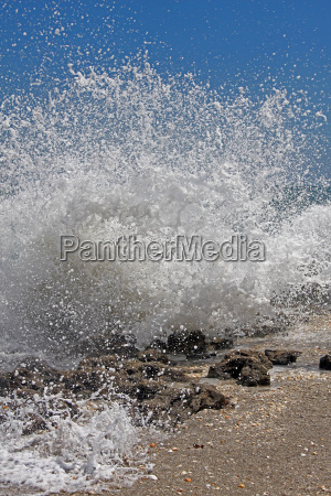 usa surf spray crusher