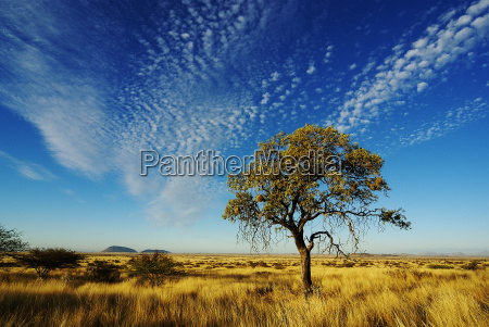 himmel ueber namibia