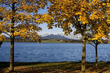 autumnal hopfensee