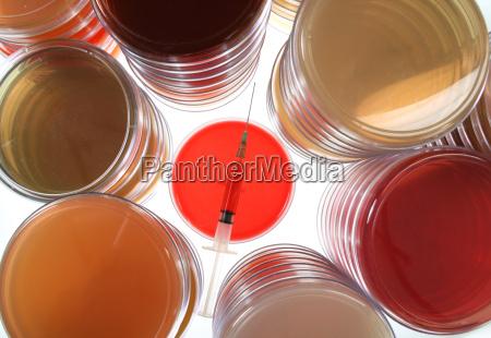 petri schalen fuer medizinische forschung