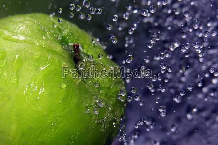 refreshing apple