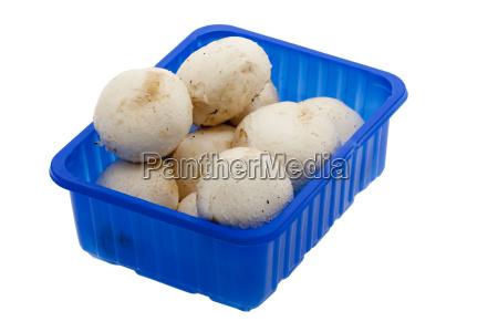 cup mushrooms