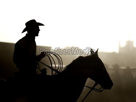 am rodeo cowboy leichte korn