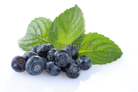 heidelbeeren blueberries