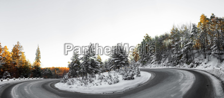 eine strasse durch den schneewald brasov